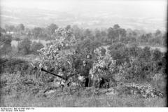 Bundesarchive WW2museum Online FLAK (1)