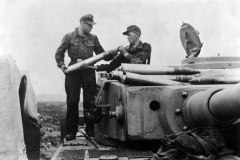 Bundesarchive WW2museum Online German Tanks (121)