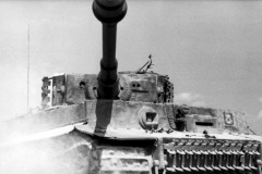 Bundesarchive WW2museum Online German Tanks (50)